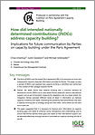 How Did Intended Nationally Determined Contributions (INDCs) Address Capacity Building?