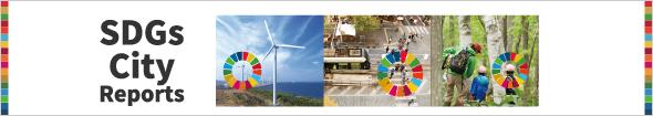 Launch of SDG City Reports on Shimokawa, Toyama and Kitakyushu