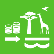 15.a INCREASE FINANCIAL RESOURCES TO CONSERVE AND SUSTAINABLY USE ECOSYSTEM AND BIODIVERSITY