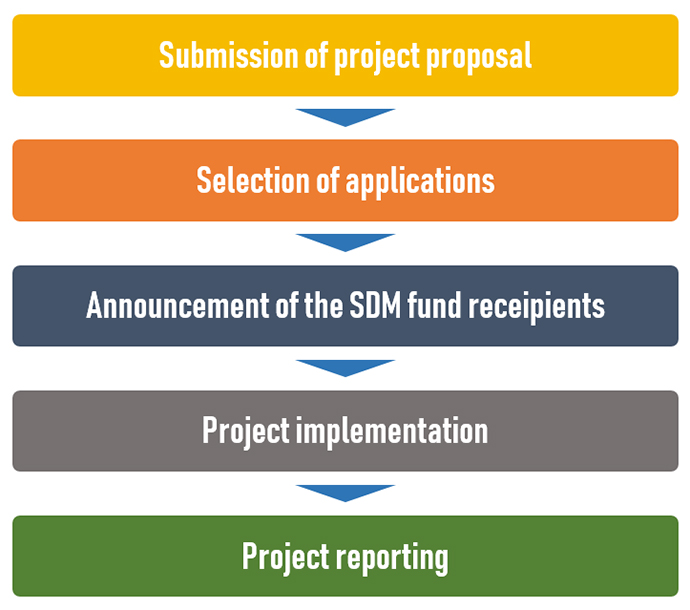 Process of the SDM project selection and implementation