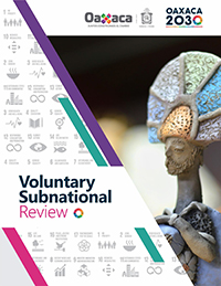 Voluntary-Subnational-Report