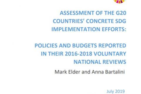 Assessment of the G20 Countries' Concrete SDG Implementation Efforts