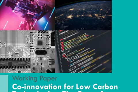 Co-innovation for Low Carbon Technologies: The Case of Japan-India Collaboration