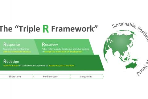 A Sustainable COVID-19 Response, Recovery, and Redesign
