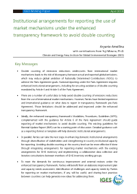 Institutional arrangements for reporting market mechanisms to avoid double counting