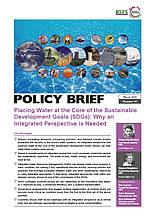 Placing Water at the Core of the Sustainable Development Goals (SDGs): Why an Integrated Perspective is Needed